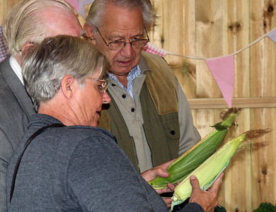 Allotment Show 2015
