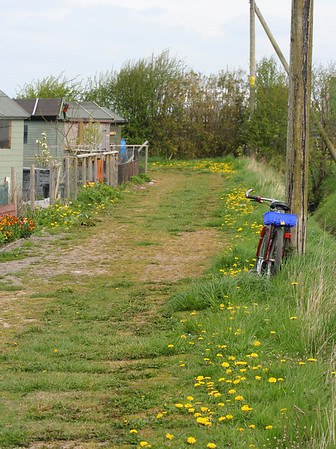 Allotment Site