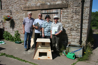 Barn Owl Box Making