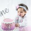 Allred 12 Month Cake Smash36