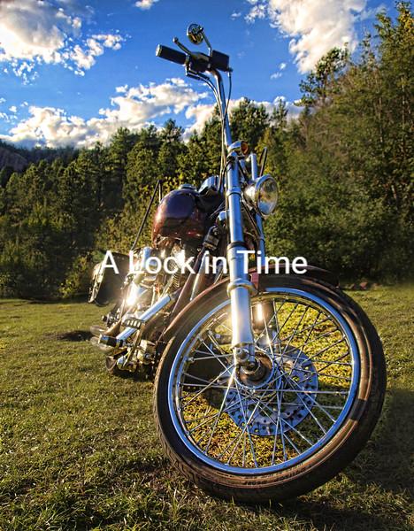 Mikes bike