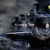 Trinidad Train