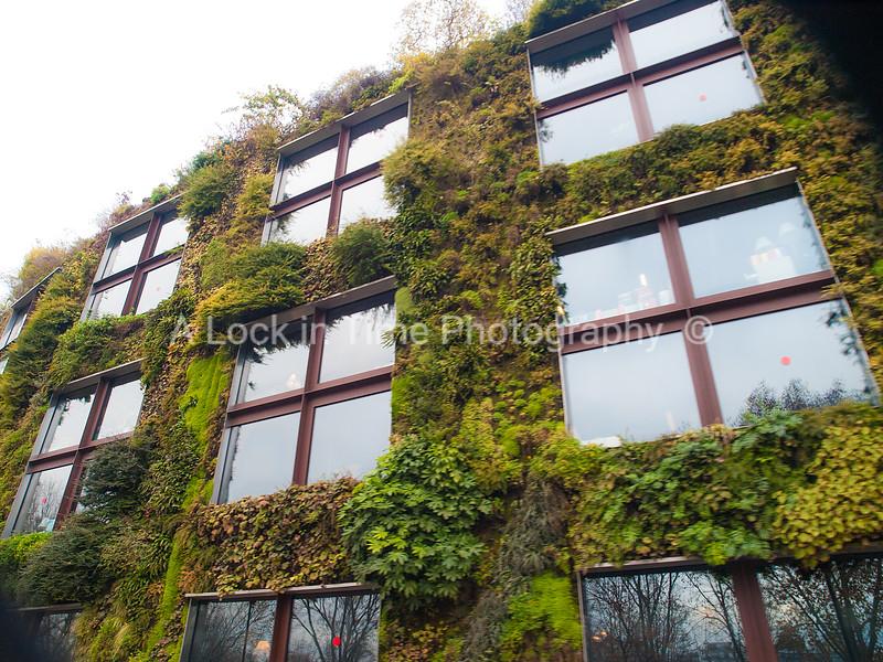 plant building