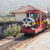 elephantisland train