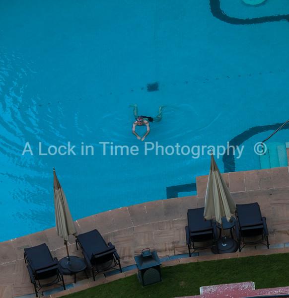 tajswimmer