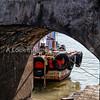 Arabian seaboat