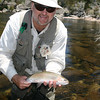 another rainbow falls to the dry fly