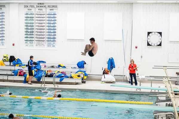 Alma Swim Team 2015