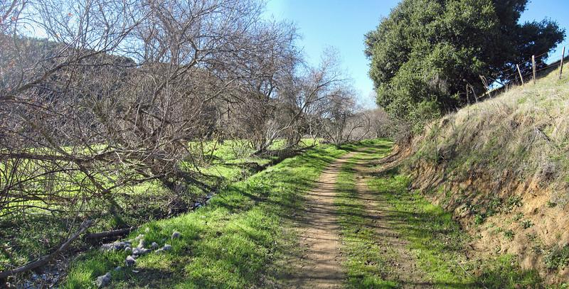 de Anza Trail 1:18:2011 22