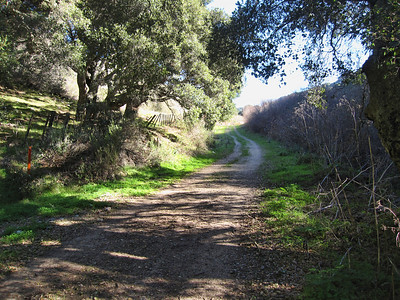 de Anza Trail 1:18:2011 19