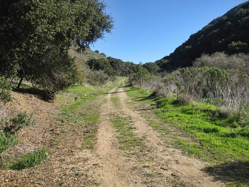 de Anza Trail 1:18:2011 21