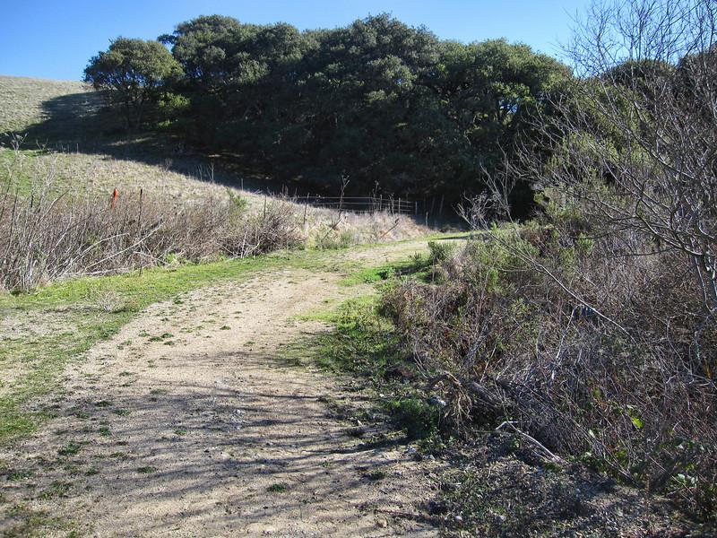 de Anza Trail 1:18:2011 16