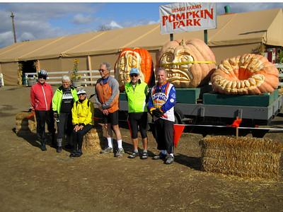 UesugiFarm Pumpkin Park 6
