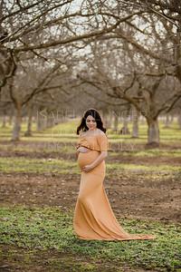 Alam Maternity-13