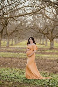 Alam Maternity-14