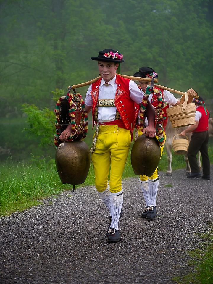 Almauftrieb; Appenzell; Switzerland