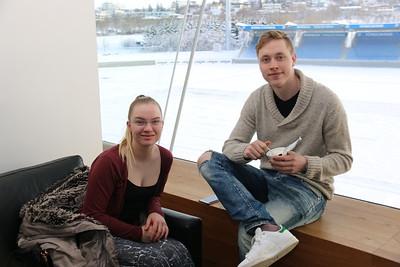 Lífshlaupið 2016