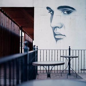 Elvis is watching