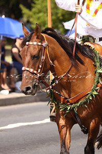 Aloha Week Parade  6570