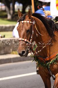 Aloha Week Parade  6571
