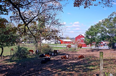 Farm in Sussex County New Jersey