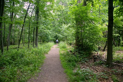 Hiking on a trail in the South Orange Reservation