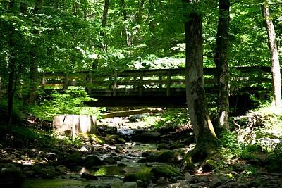 Bridge along the Appalachian Trail in New Jersey