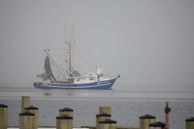 Biloxi shrimp boat going out in the fog.