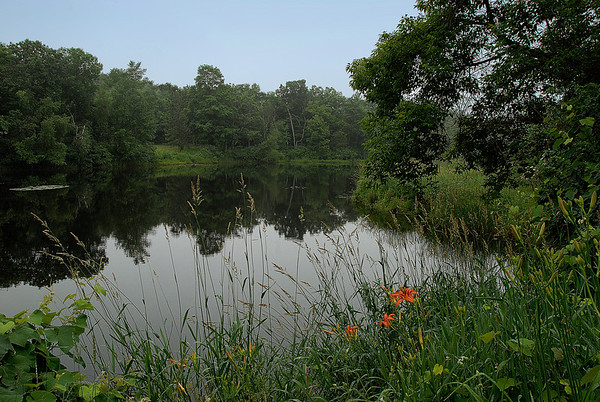 DSC9094-12x18 Summer Pond, Dunstable, MA