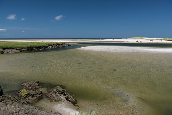 Summer Day - Low Tide