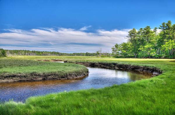 The Marsh at Rachel Carson NWR