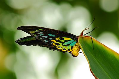 Nature's Handiwork!