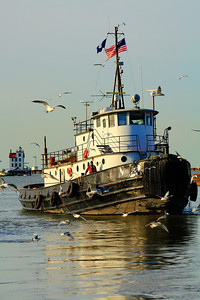 Tug 'Manitou' - Afternoon on the Black River!