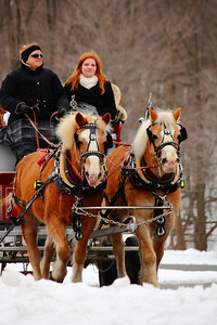 Winter Days Festival - Carriage Ride in the Snow!