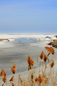 Beginning to Thaw - 'Old Woman Creek' Estuary!
