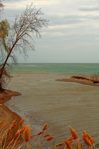 The Color of Water - 'Old Woman Creek' Estuary!