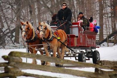 Carriage Ride Fun at Mill Hollow!  © 2010 Paul L. Csizmadia  All Rights Reserved  No Use Allowed without Permission  View on black  'Winter Days Festival' at 'Mill Hollow', within the Vermillion River Reservation of the Lorain County Metroparks System.
