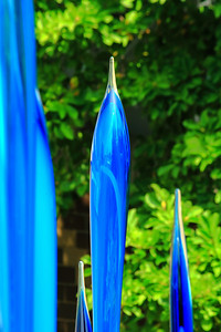 Spears of Blue! - 'Chihuly' at Franklin Park Conservatory!