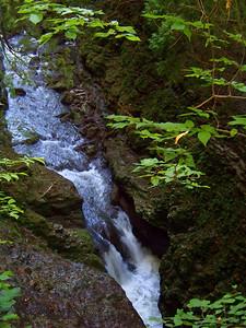 """""""Clifton Gorge"""" Trail!"""
