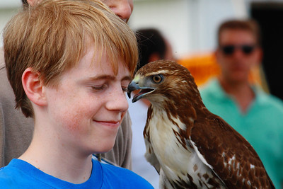 Ohio Scottish Games 2010 - A Chance to Get Up Close to a Red-tailed Hawk!