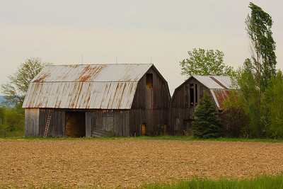 Trekking for Barns - Near Cayuga Lake in the Finger Lakes Region of New York State!