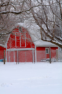 A Little Red Barn in the Snow!