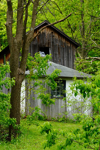 A Barn Along Seneca Lake!