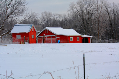 Little Red Barns!