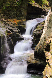 Along the Gorge Trail of Watkins Glen!