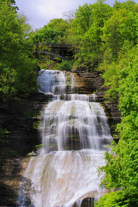 'Shequaga' - The Falls at Montour Falls, NY!