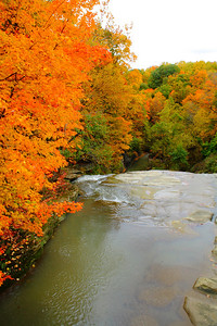 Cuyahoga Valley National Park - Above the 'Brandywine Falls'!