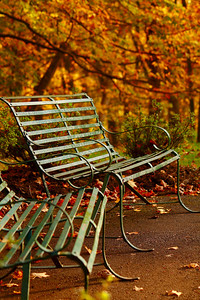 Bench Space - A Place to Sit and Enjoy the Seasonal Color!  © 2010 Paul L. Csizmadia  All Rights Reserved  No Use Allowed without Permission