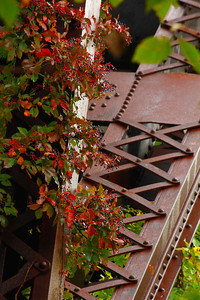 Iron & Nature  Works!  © 2010 Paul L. Csizmadia  All Rights Reserved  No Use Allowed without Permission
