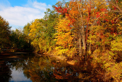 Fall's Color along the Banks of the Black River!  © 2010 Paul L. Csizmadia  All Rights Reserved  No Use Allowed without Permission